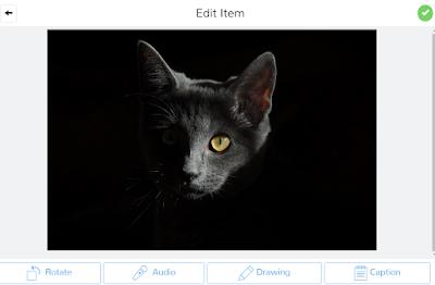 Add Audio to Images In SeeSaw Digital Portfolios