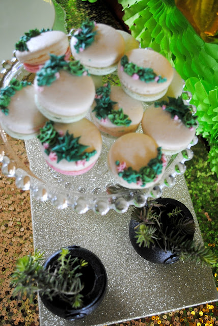 Succulent strawberry macarons at a St. Patricks Day brunch