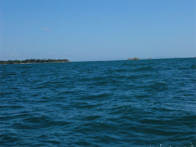 Melihat Peluang Bisnis Budidaya Rumput Laut, Udang, dan Mutiara