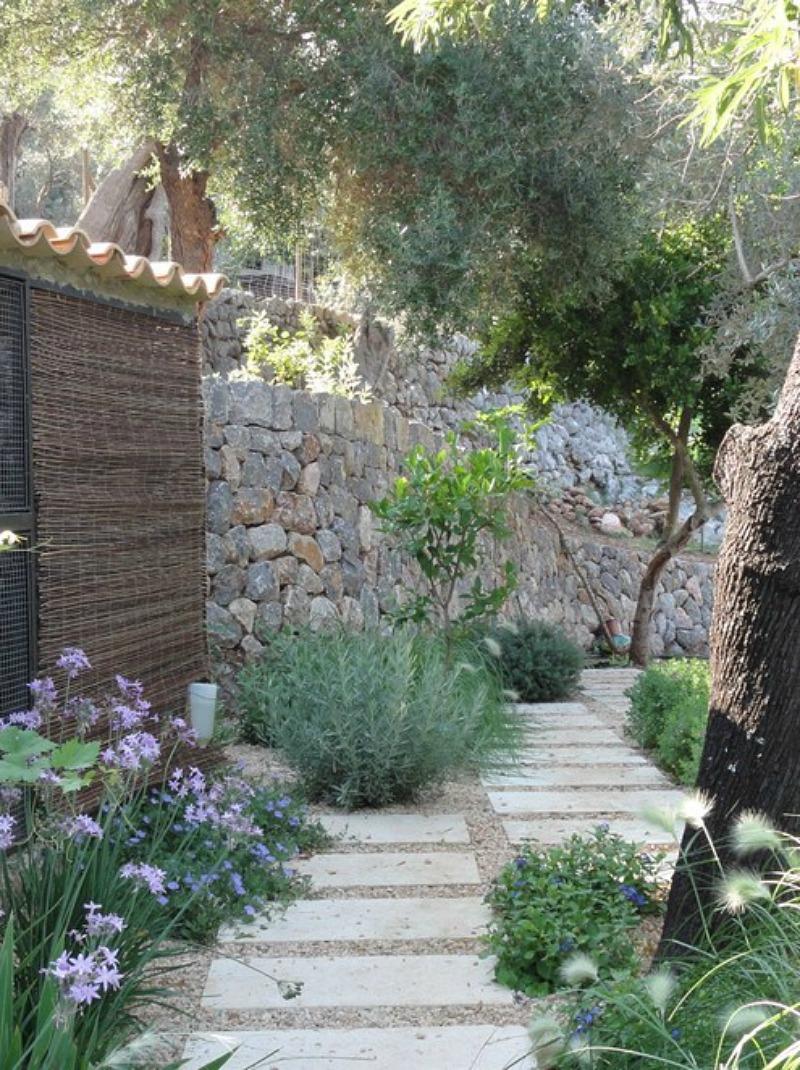El jard n mediterr neo ecoeficiente guia de jardin for Jardines mediterraneos pequenos