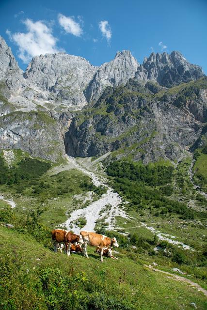 Vier-Hütten-Wanderung Mühlbach  Wandern am Hochkönig  Wanderung SalzburgerLand 12