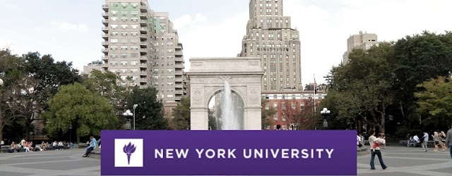 NEW YORK UNIVERSITY Offers First Crypto Major in US, Sees Exponential Increase in Interest