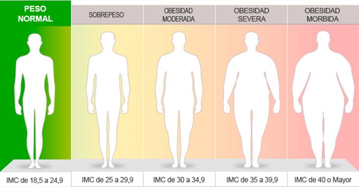 tratamientos caseros para eliminar la grasa del abdomen