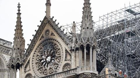 Ezerháromszáz normadiai tölgyet ajánlottak fel a Notre-Dame gerendázatának helyreállításához