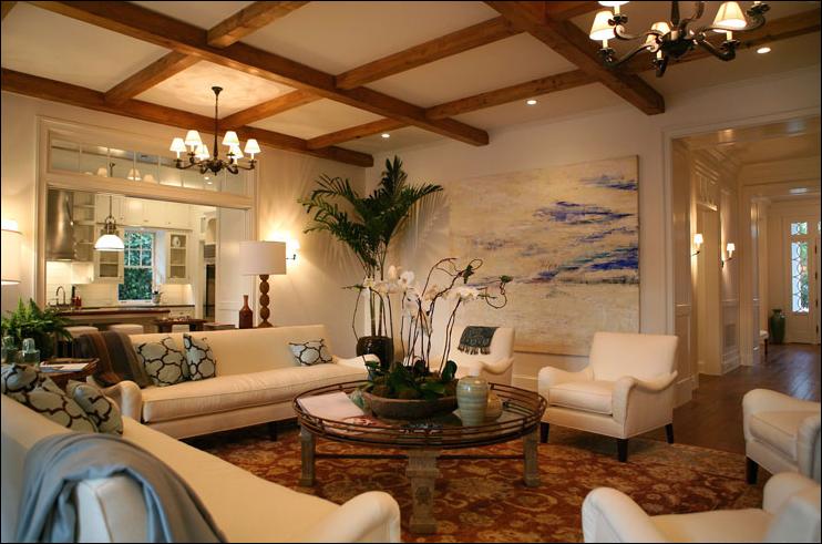 Transitional Living Room Design Ideas - Home Decorating Ideas