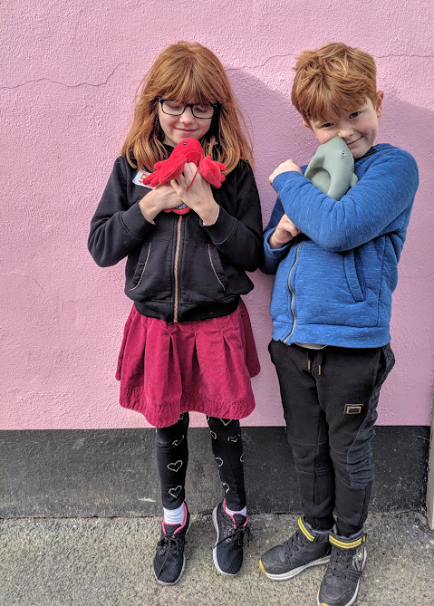 A Morning in Padstow : What to do with Kids  - instagram friendly walls