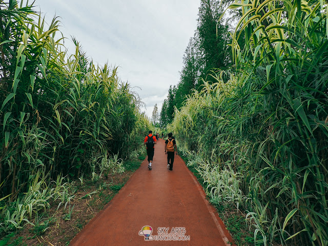 昆明海东湿地公园 Haidong Wetland Park