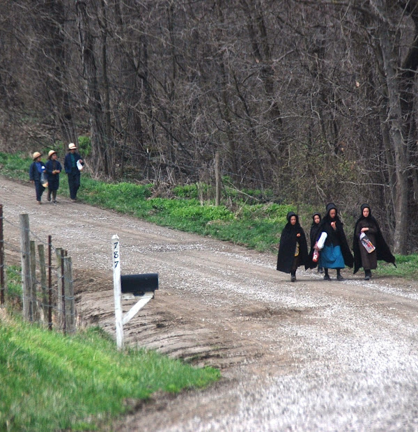 Amish Crossings With Karen Anna Vogel Pay Taxes