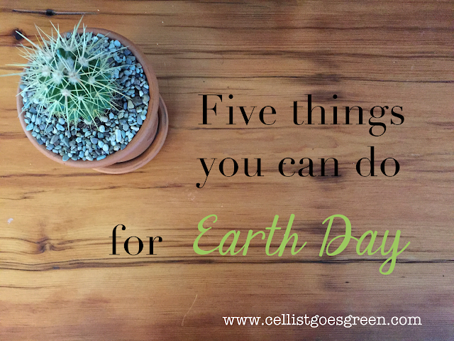 Five things you can do for Earth Day
