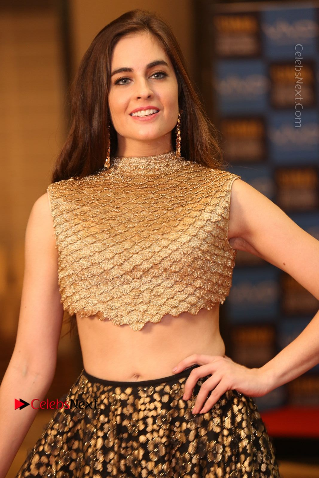 Sarah Hopkins Latest Photos in Lehenga Choli at SIIMA Short Film Awards 2017