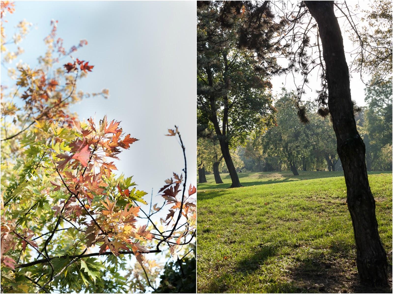 varosliget city park budapest