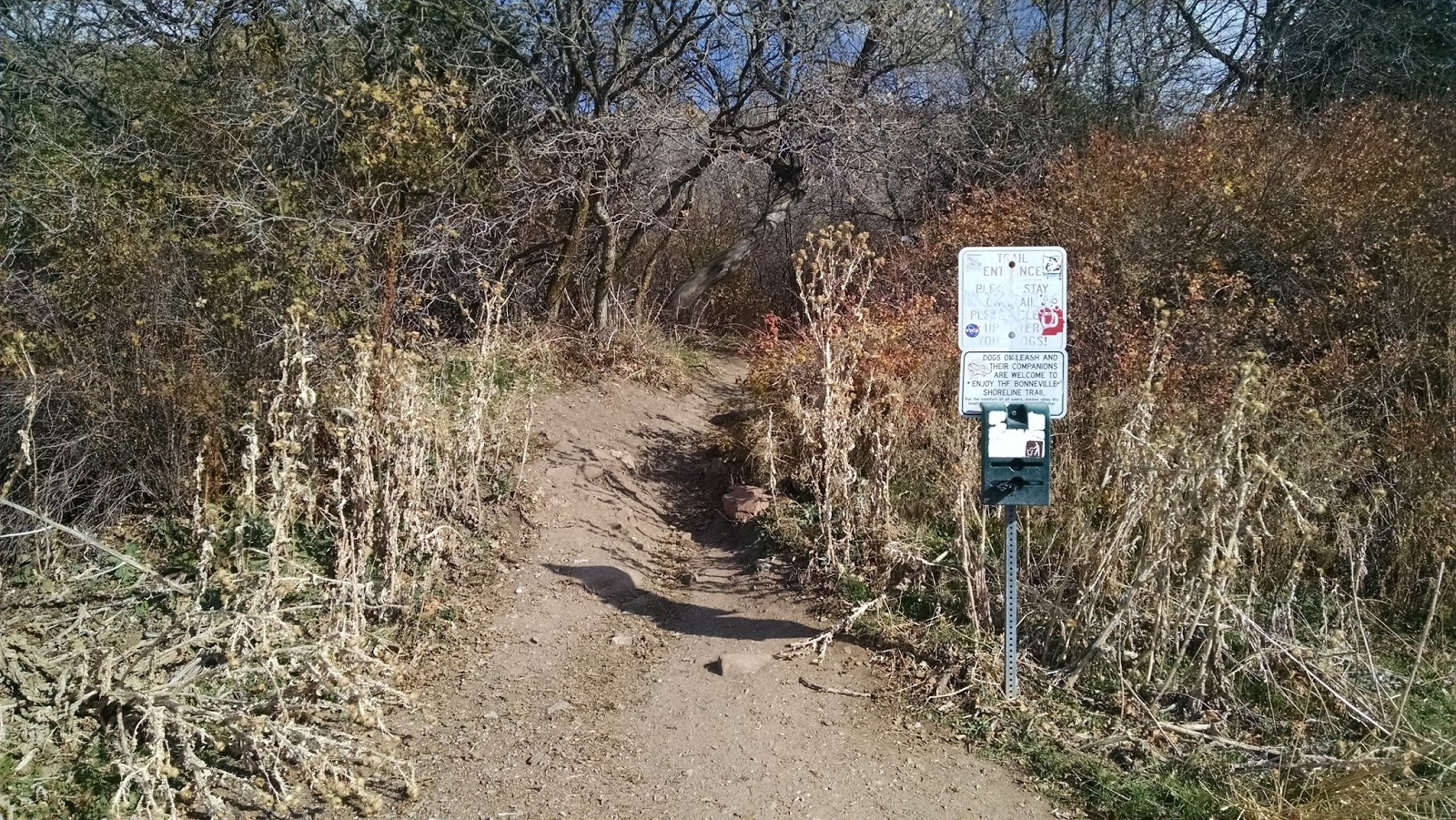 The Trail Head Near 380 Colorow Road