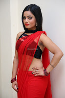 Aasma Syed in Red Saree Sleeveless Black Choli Spicy Pics ~  Exclusive Celebrities Galleries 013.jpg