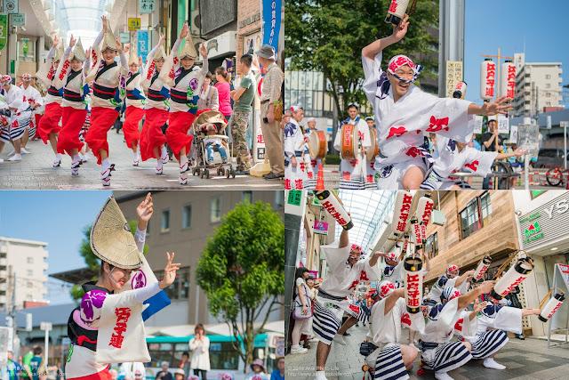 江戸っ子連、熊本地震被災地救援募金チャリティ阿波踊りの記事のカバー写真