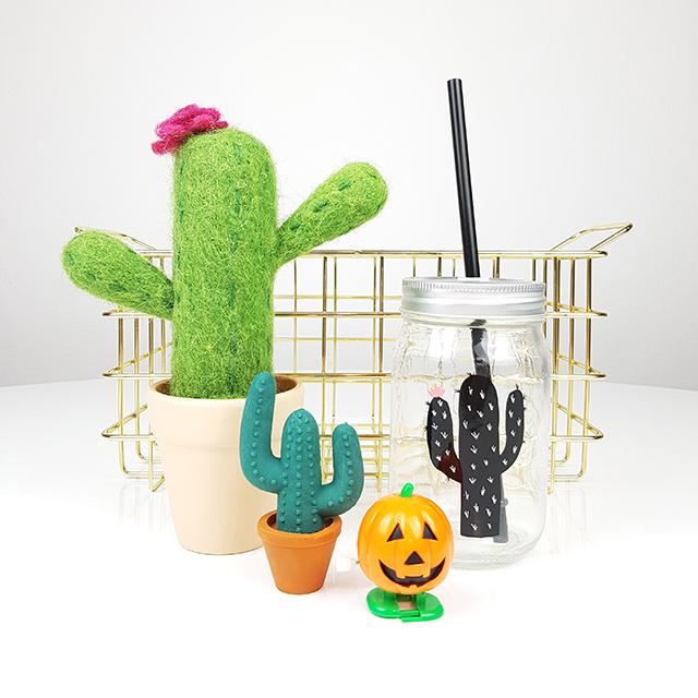 cactus RIte Rite Detalles
