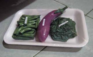 Replika sayur buncis, terong dan daun singkong