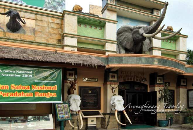 Rahmat International Wildlife Museum & Gallery, Medan
