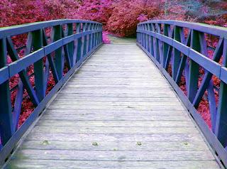 De qué están hechos los puentes