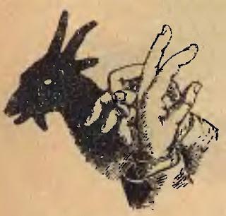 przykłady obrazków cieniowych