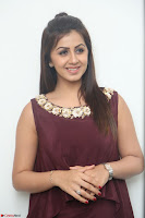 Nikki Galrani in a Brown Shining Sleeveless Gown at Nakshatram music launch ~  Exclusive 025.JPG