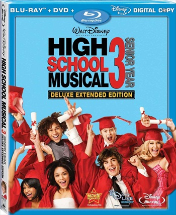 High School Musical 3 (2008) Dual Audio Hindi 480p BluRay 350mb