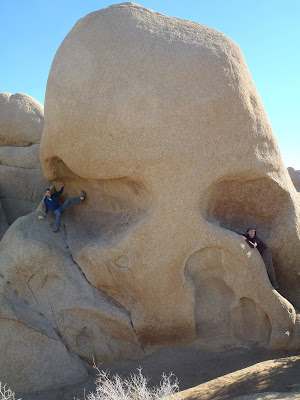 Joshua Tree National Park California Rocks Skull