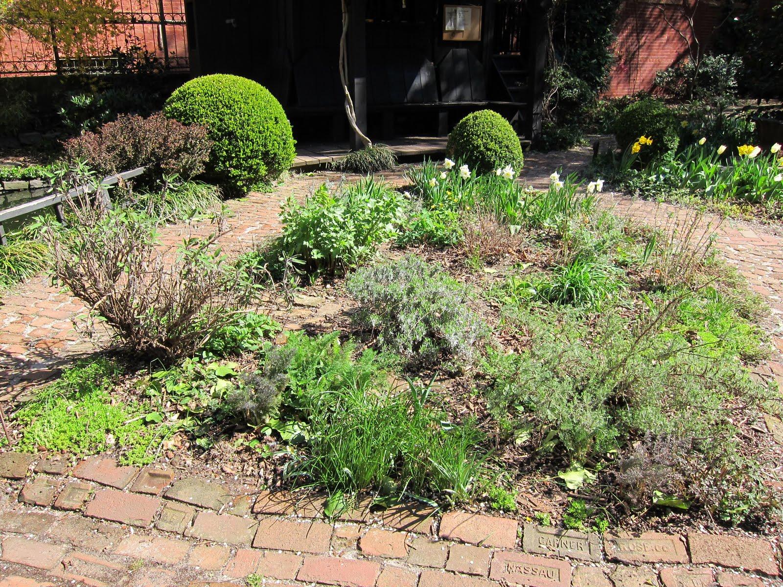 commmunity gardening