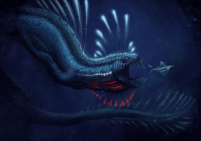 Hewan Laut Unik Paling Aneh Belum Pernah Kalian Ketahui Sebelumnya