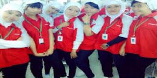 http://www.jobsinfo.web.id/2018/05/loker-lowongan-kerja-pt-xacti-indonesia.html
