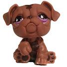 Littlest Pet Shop Tubes Bulldog (#881) Pet