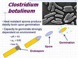 8 Senjata Virus Biologis Paling Berbahaya dan Mematikan