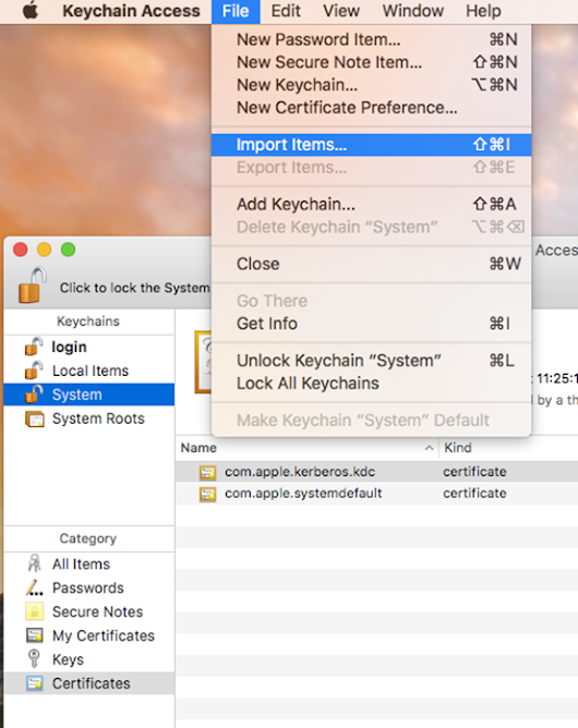 Importing an ISA .pem certificate for ironport on a MAC OSx