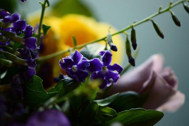 Duranta erecta flowers, Monday Vase meme