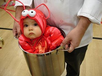 Lobster in pot of boiling water. Hotdog a grill. Baby Lady GaGa Costume  sc 1 st  unique unusual or interesting & UNIQUE UNUSUAL OR INTERESTING: Not Quite Right Baby Costumes