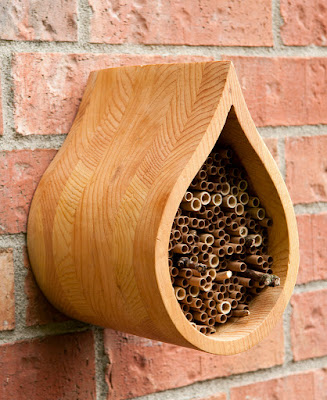 house for solitary bee