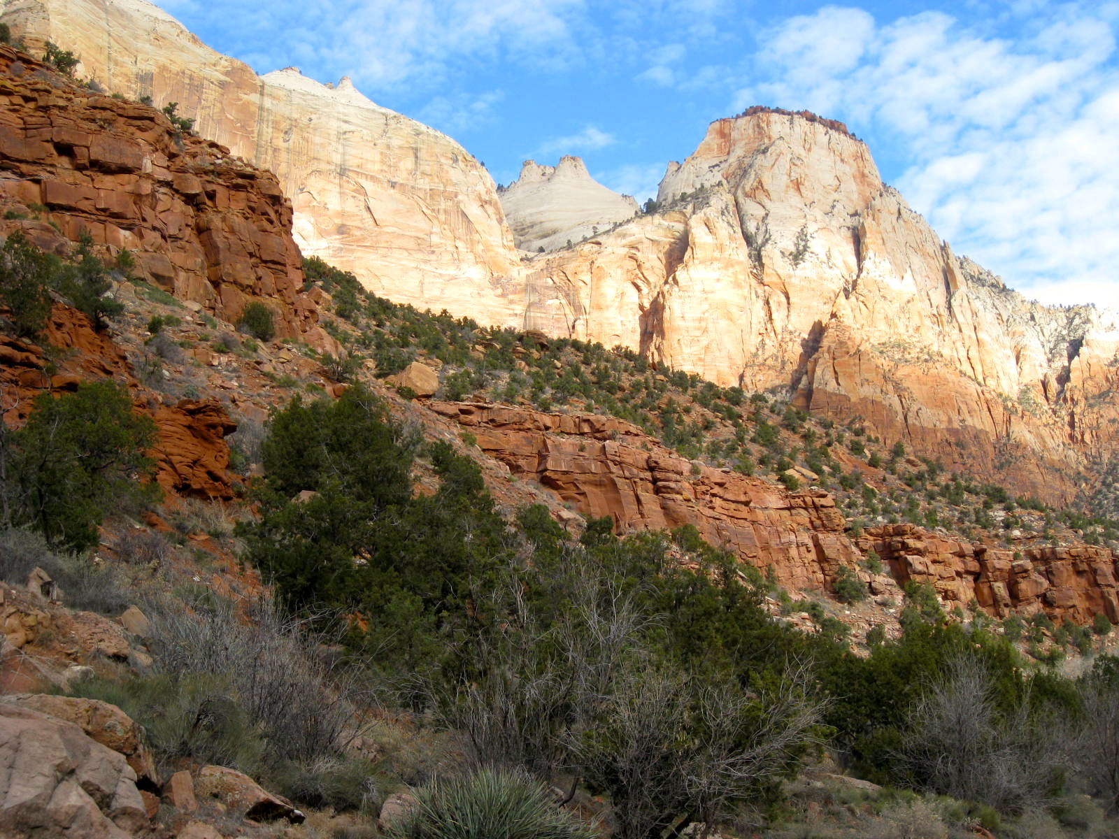 Embarking With Bear And Roger About Beautiful Zion
