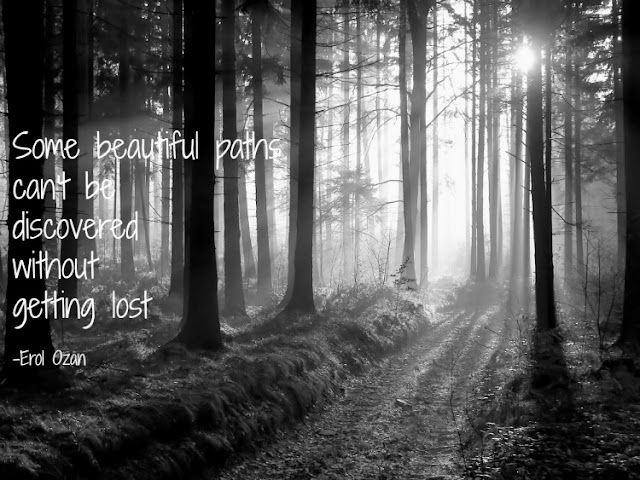 Quote about life's journey. Some beautiful paths can't be discovered without getting lost.