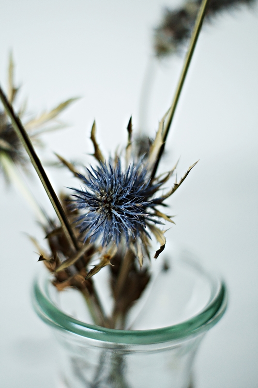 Blog + Fotografie by it's me! - kräftiges Blau einer getrockneten Kugeldistel