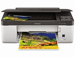 Process for reset the printer Epson Stylus TX133