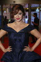 Payal Ghosh aka Harika in Dark Blue Deep Neck Sleeveless Gown at 64th Jio Filmfare Awards South 2017 ~  Exclusive 086.JPG