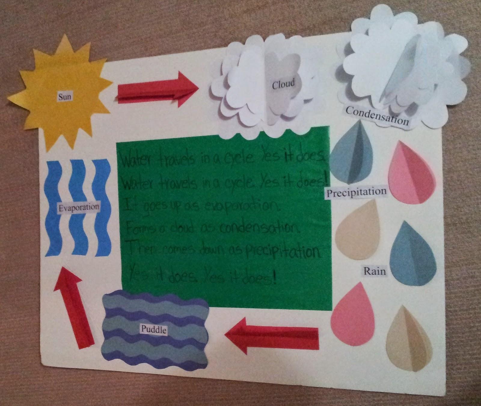 Elizabeth Mary Water Cycle