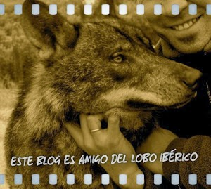 En defensa del Lobo