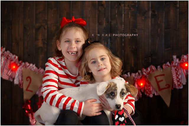 valentines day, k 'n kae photography, puppy photography, child photography, Colorado Springs, Colorado, 80925, RIP, rest in peace, parvo, Colorado Springs family photographer, Custom Photography, Custom Portrait Photographer, colorado springs photographer,