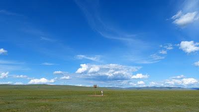 Mongolie Khentii steppe panier de baskett