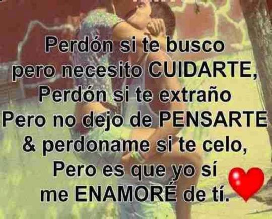 Frases De Amor Para Impresionar A Tu Amor Tips De