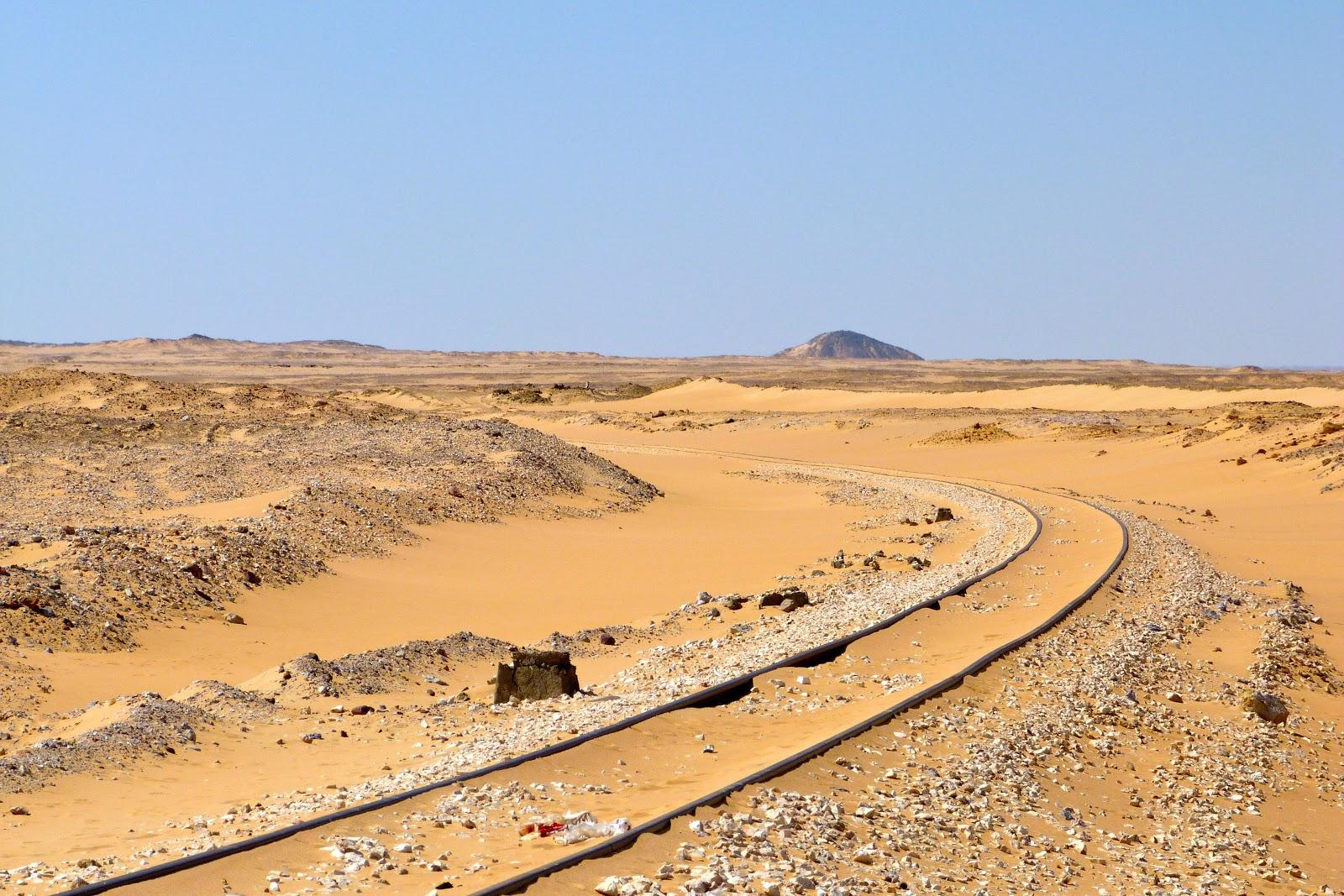 Real Desert Oasis - Bing images