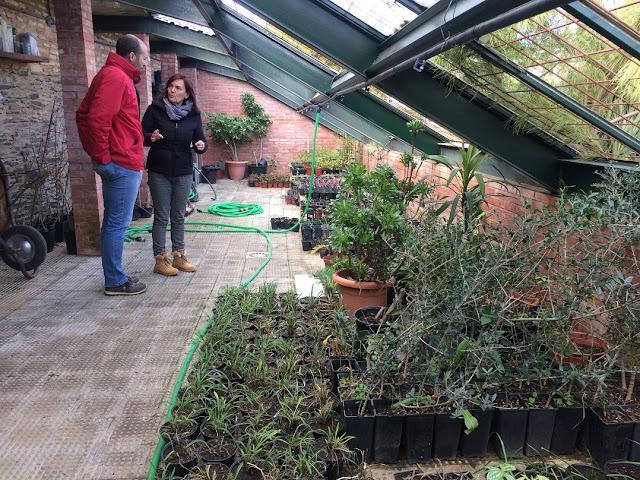 http://www.esvalverde.com/2018/02/para-los-jardines-de-valverde.html