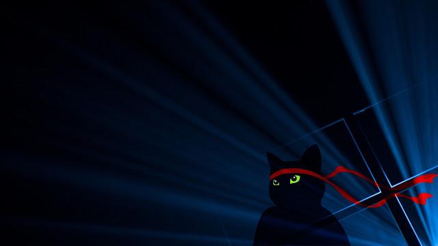 Papel de parede  Windows 10 Gato Ninja