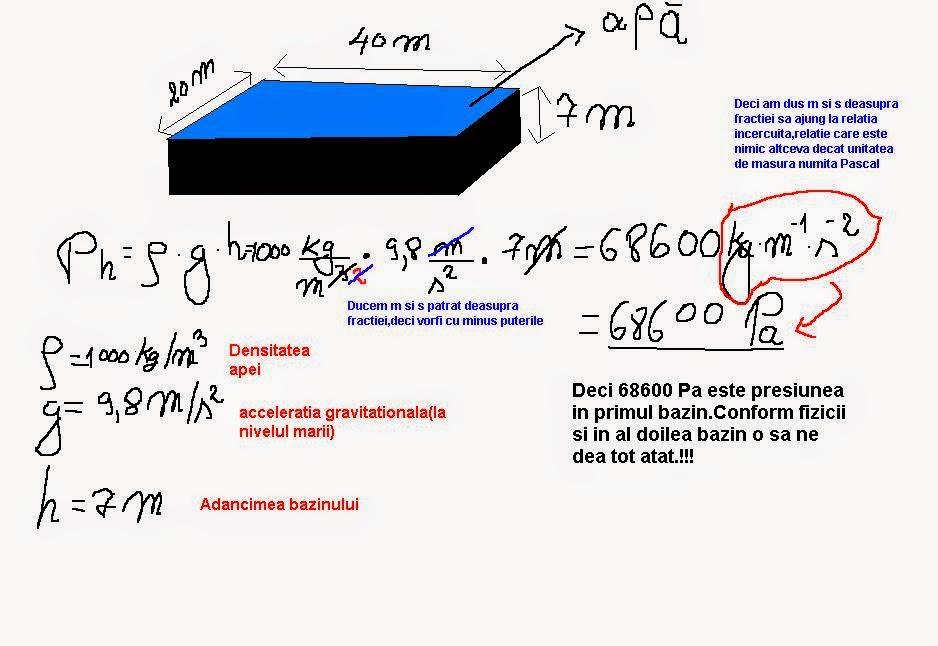 Volume prostatico: formula per il calcolo