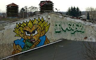 http://fotobabij.blogspot.com/2016/02/puawy-ultowarowa-graffiti.html